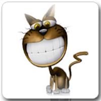 Funny Cat Live Wallpaper Pro 4.0