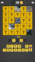 Screenshot of Picture Riddles: Word Quiz!
