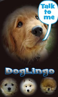 Dog Lingo - talk to your dog- screenshot thumbnail