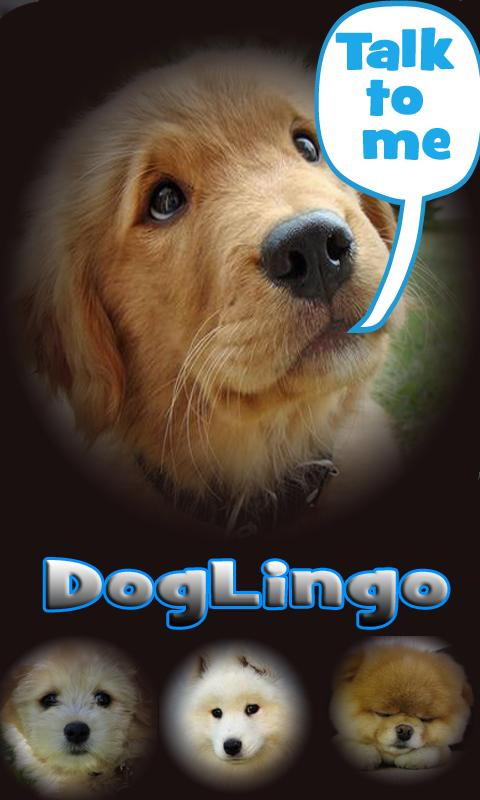 Dog Lingo - talk to your dog- screenshot