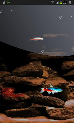 Tiny Fish HD LWP FREE Neon