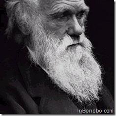 Darwin's Beard