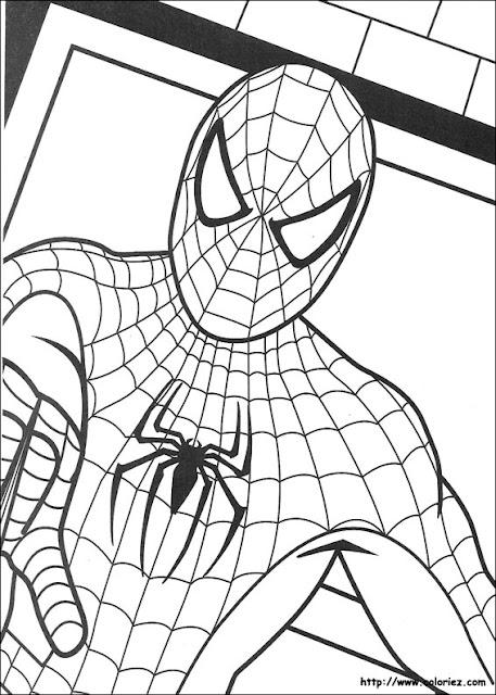 Pintar Spiderman Tu Heroe Favorito