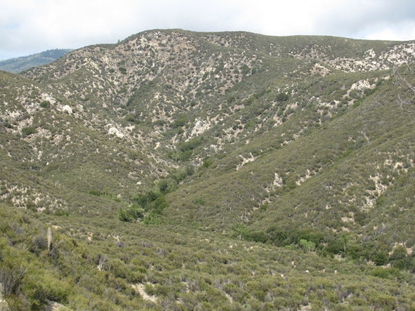 The low rolling of the hills on upstream.