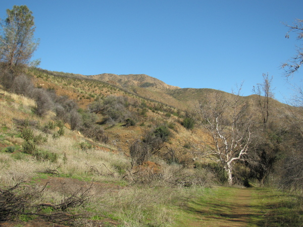 A bit of trail and the hills beyond.