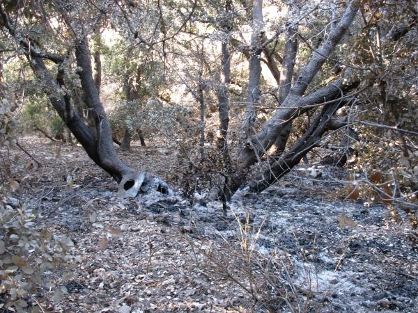 a spot fire