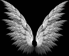 White_Fractal_Angel_Wings_by_Shadoweddancer-stitched