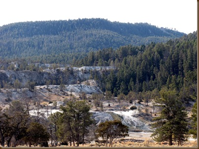 Mammoth Hot Springs2
