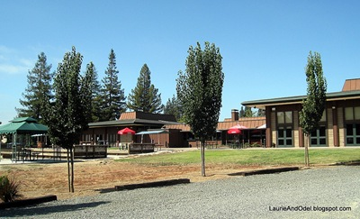 Back of Napa Elks Lodge, seen from RV sites.