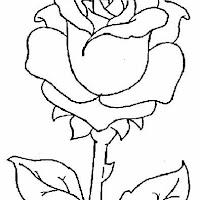 Imagenes De Flores Para Dibujar Tumblr Encantador Dibujos De Flores