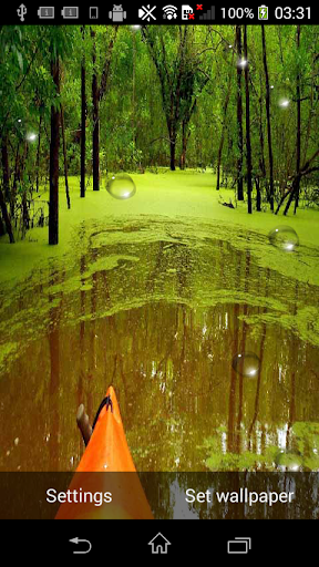 RainDrops Live Wallpapers