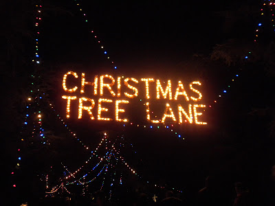 Christmas Tree Lane Fresno.The Evolution Of Leni Christmas Tree Lane Fresno Ca
