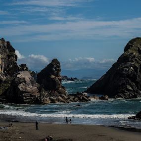Harris Beach Park by Scott Morgan - Landscapes Waterscapes ( oregon, park, oregon coast, pacific, sea, ocean, beach, harris beach, rocks,  )