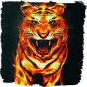 Grinning tiger live paper icon