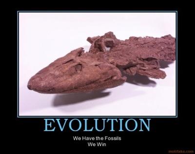 evolution-fossils-win.jpg