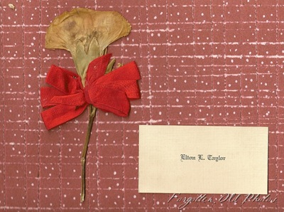 Page 18 and 19 Elton Taylor Card and carnation