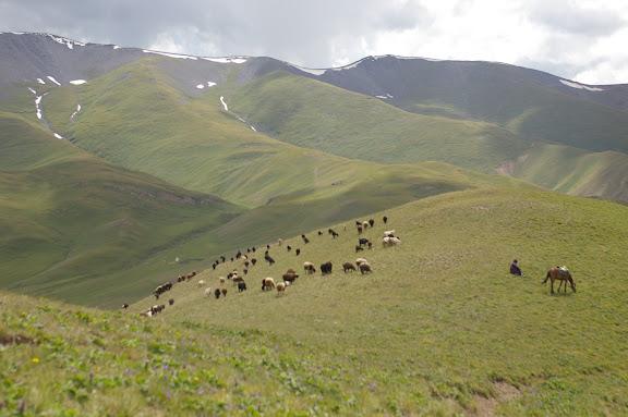 Au-dessus de la Dolon Pass (3000 m) ; vue vers l'Ouest, 15 juillet 2006. Photo : J.-M. Gayman