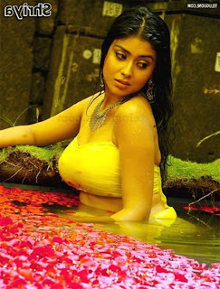 Hot & Spicy Telugu actress photos, videos & movies – Updated Daily – part 4