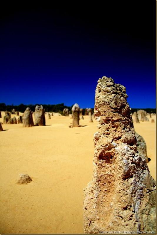 Pinnacles Desert 1 - Western Australia - Australia