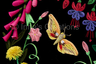 Quilled moth (butterfly)