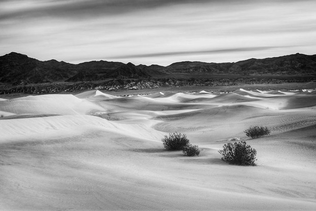 black-and-white-nature-photography-desert