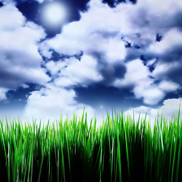 Illustrated Grass under the blue sky. Wallpaper for ipad