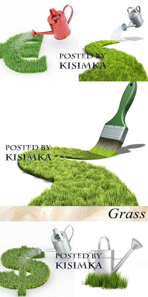 Stock Photo: Grass 7