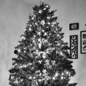 by Sara Humphrey - Public Holidays Christmas