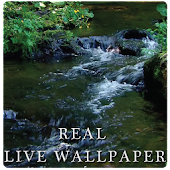Real river live wallpaper