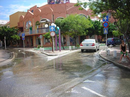 Aruba%20080.jpg