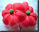 buddy poppy 0510 (7)