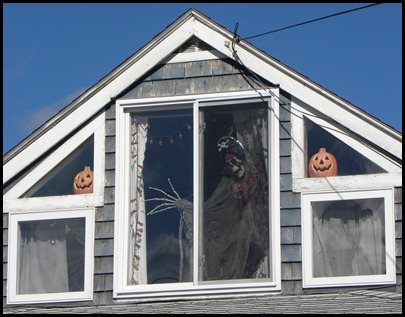 skeleton window (1)
