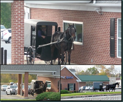 amish banking collage