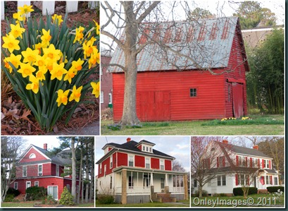red houses collage0318