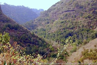 1378 Camino de la Laurisilva