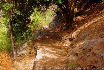 1386 Camino de la Laurisilva