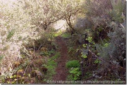 0831 El Portillo-Bº Mina