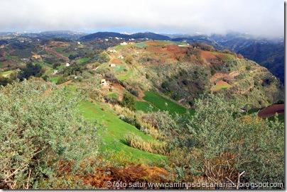 1660 Montaña Pajarito-Valleseco