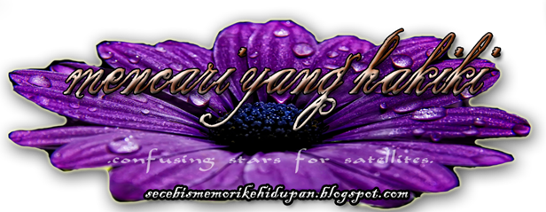 header blog anyys