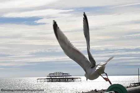 Incontri Brighton UK