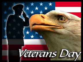 search-hl-en-q-site-va-gov-veterans-day-info-and-video