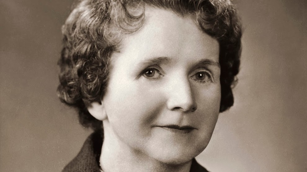 rachel carson essay the sense of wonder In that essay, carson argued that a sense of awe about the natural world must be  cultivated early—and sustained into adulthood in that way.