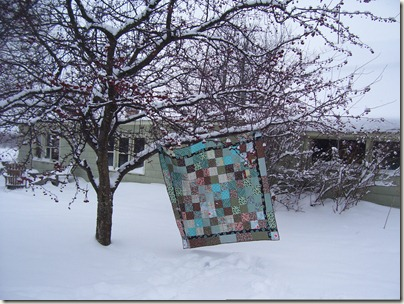 quilts, chickens, winter 007