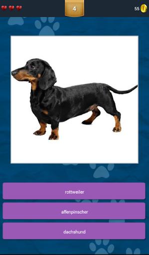 玩免費益智APP|下載Dog Mania app不用錢|硬是要APP