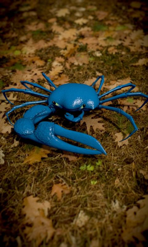 Blue Crab Free live wallpaper - screenshot