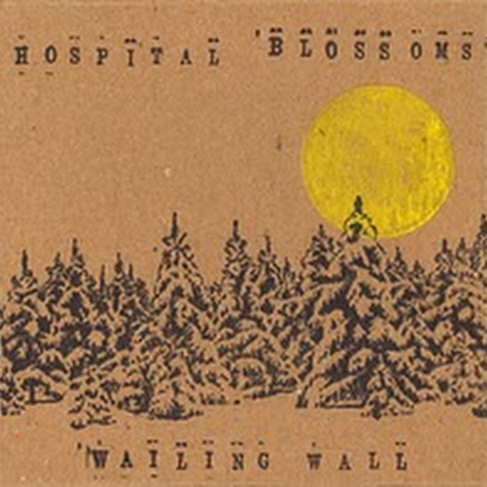 The Wailing Wall - 2009 - Hospital Blossoms