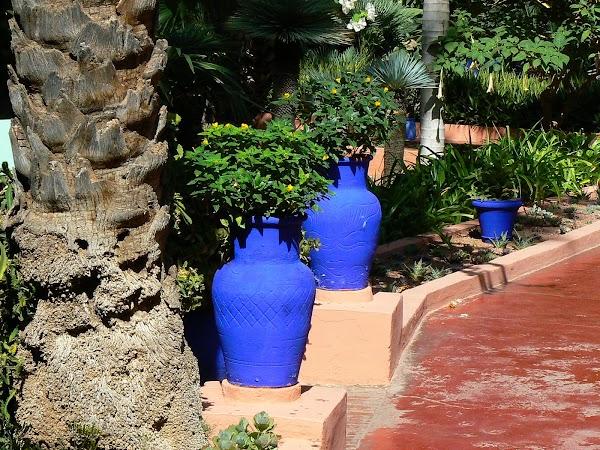 Obiective turistice Maroc: pe alei, Marrakech