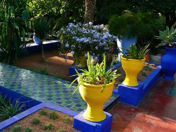 Obiective turistice Maroc: ghivece, Marrakech