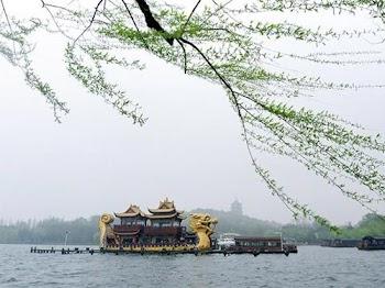 垂柳依依寄情思 亲历杭城最美的季节