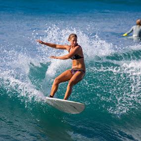KK Point Panic by Jason Rose - Sports & Fitness Surfing ( surfing, waves, short board, wave, short boarding, point panic, pt panic, bikini, kk, hawaii, oahu )